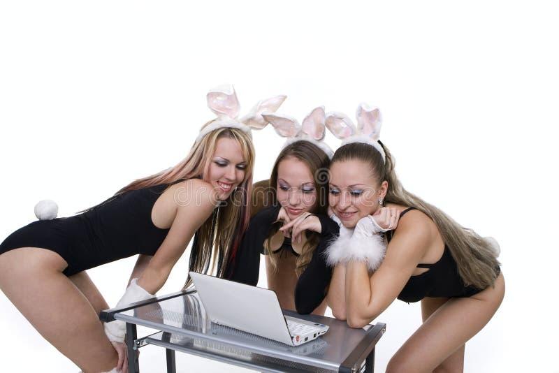 Playgirls mit den Häschenohren, die Laptop betrachten lizenzfreie stockfotografie