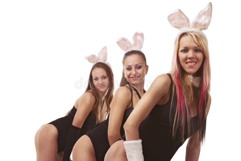 Playgirls sexy in costume del coniglietto fotografia stock libera da diritti