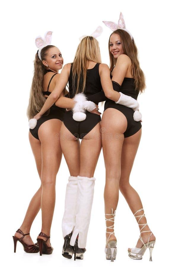 Playgirls sexy dans le costume de lapin photos libres de droits