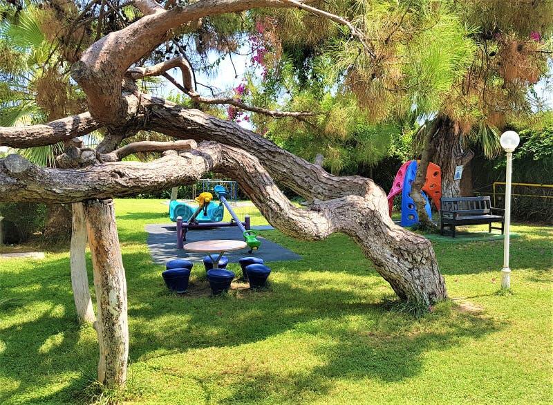 Playgroumd、松树和九重葛在家庭旅馆,凯梅尔,土耳其庭院里  免版税库存图片