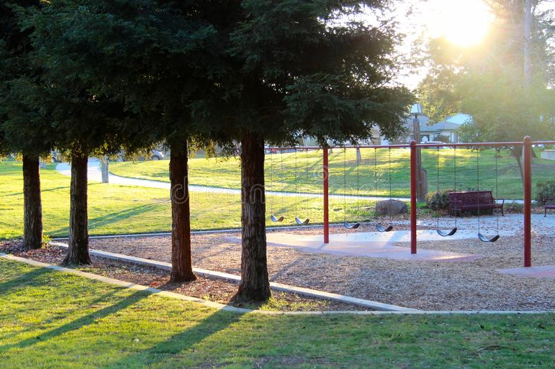 Playground and spruces. The picture was taken at the playground in the city of San Jose, California, United States royalty free stock image