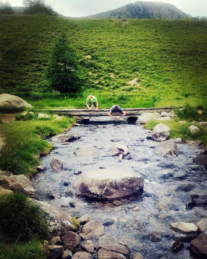 Playing by the alpinian mountain rivers stock photo