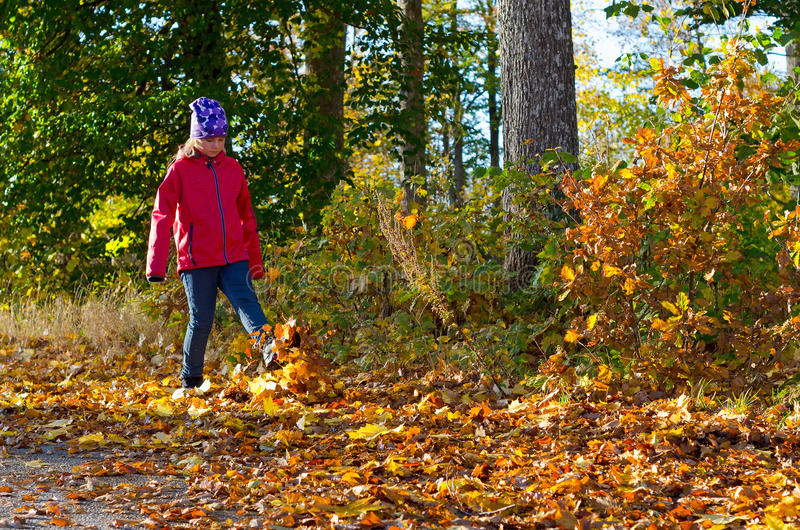 Download Playing with autumn leaves stock photo. Image of face - 35723056