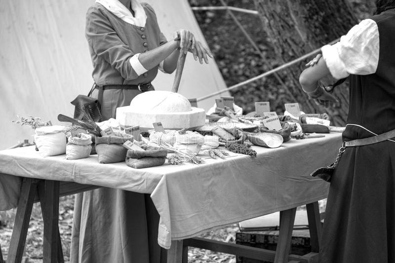 Playing back a Medieval Herbal. Black and white photo royalty free stock image