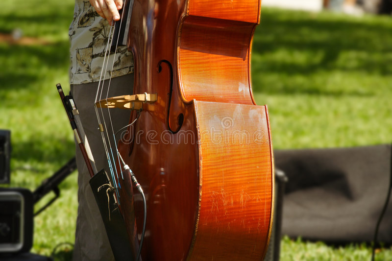 Download Playing The Cello stock photo. Image of real, outdoors - 2208608