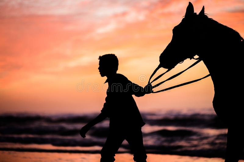 A child with a horse at sunset. Playing horse on the shore of the sea of Gaza City at sunset with horse . The sunset is very beautiful royalty free stock photography