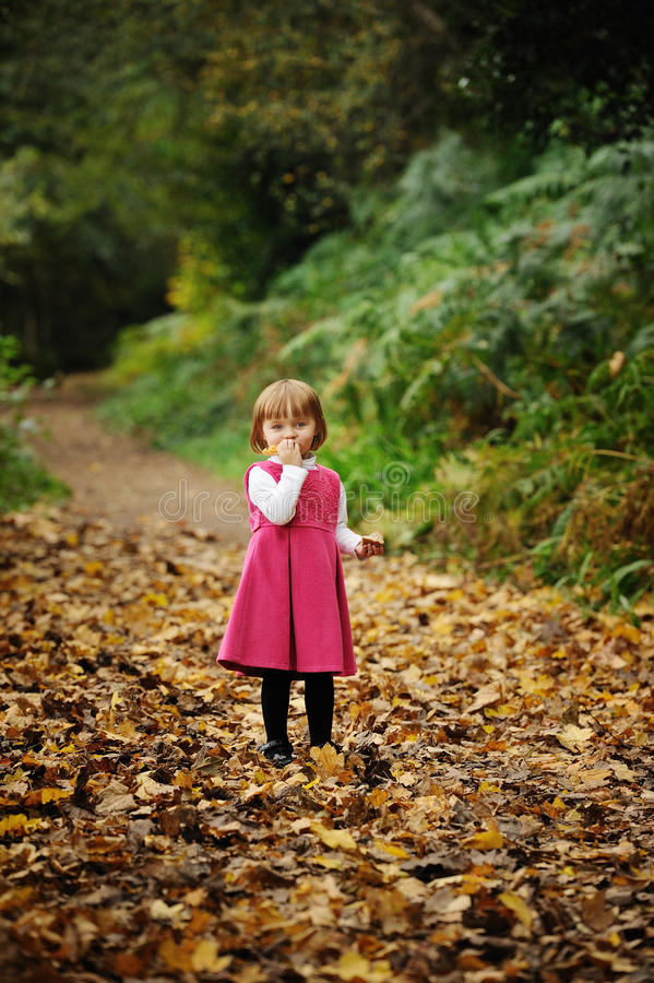 Playing in the Leaves. A little girl playing with golden leaves in a park royalty free stock photos