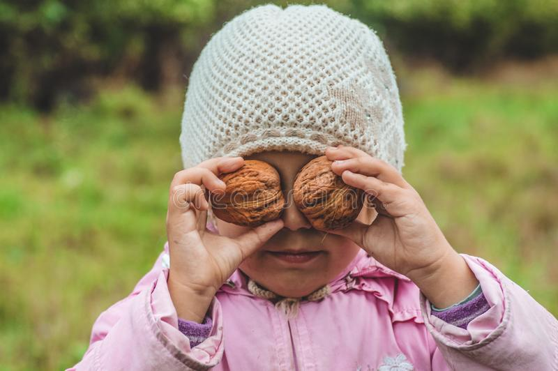Playing outdoors cute little girl holding a nuts in front of her. Nuts harvests. Autumn in the garden, the girl and large nuts royalty free stock photo