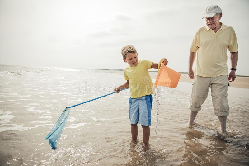 Playing in the Sea. Little boy playing in the sea while his grandad stands by close stock images