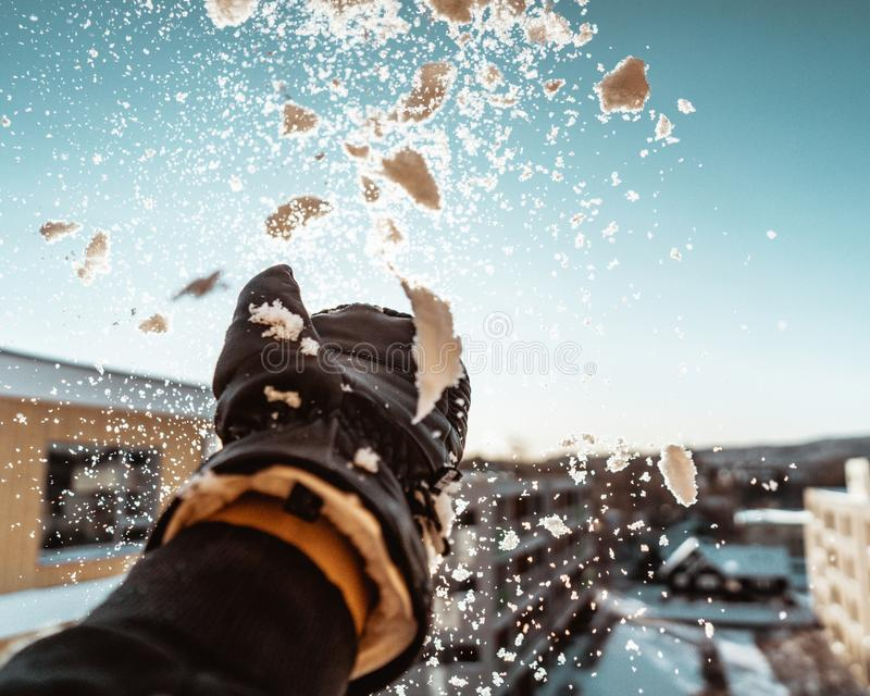 Playing With Snow stock photos