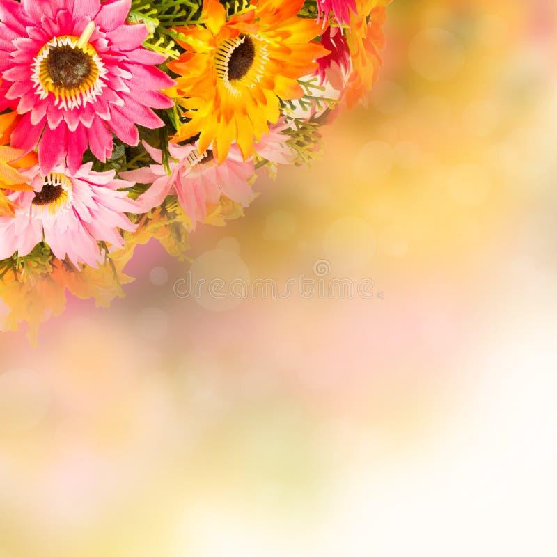 playnig för bakgrundsblommalampa Fejka blommor arkivfoto