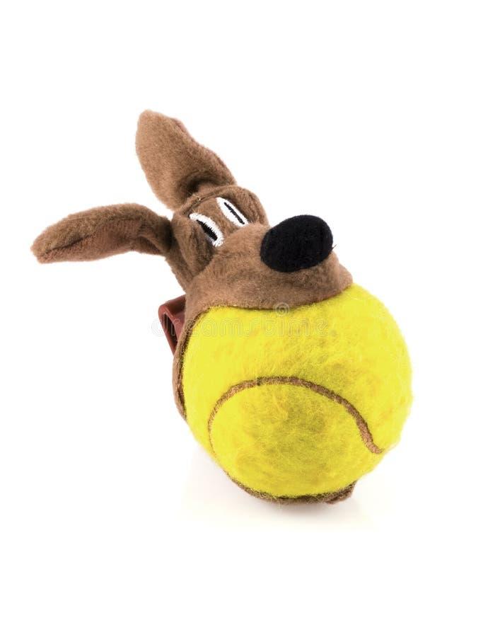 Plaything dos Doggies. fotos de stock royalty free