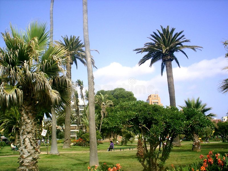plaza της Κολομβίας στοκ εικόνες με δικαίωμα ελεύθερης χρήσης