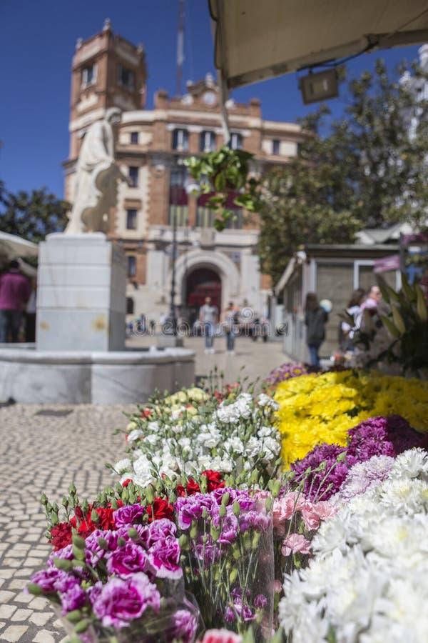 Plaza de Las Flores aka Plaza de Topete, w för Cadiz blommamarknad arkivbild