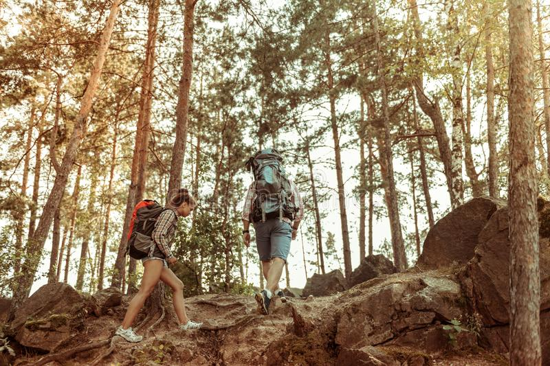 Pleasant active couple walking together in the forest stock photography