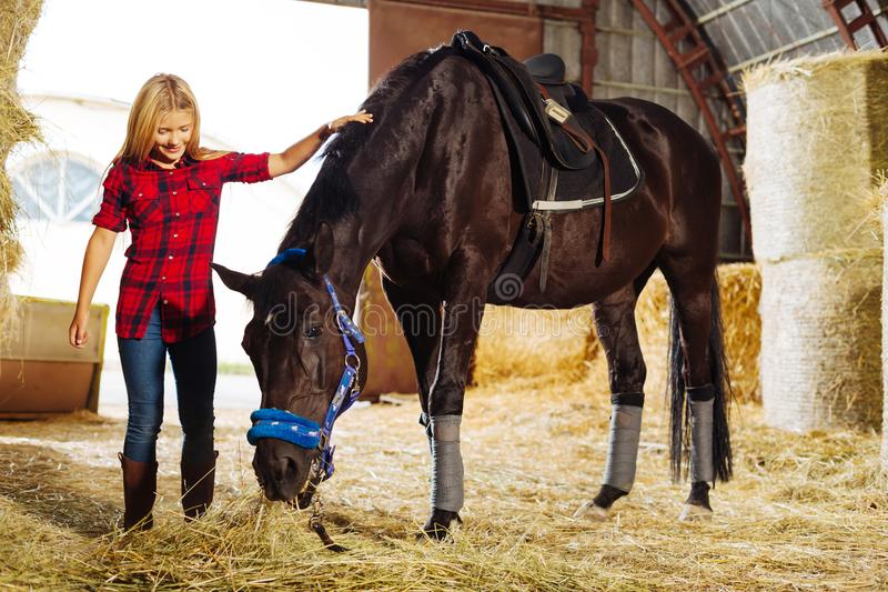 Pleasant little schoolgirl coming to stable and seeing dark horse. Seeing dark horse. Pleasant little schoolgirl wearing riding boots coming to stable and seeing stock photos