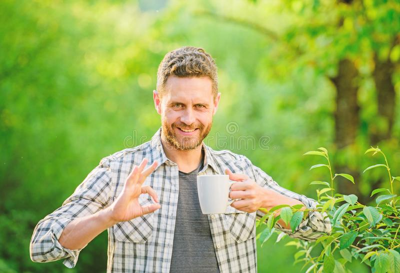 Pleasant moment of self care. Natural drink. Healthy lifestyle. I prefer green tea. Refreshing drink. Man bearded tea royalty free stock images