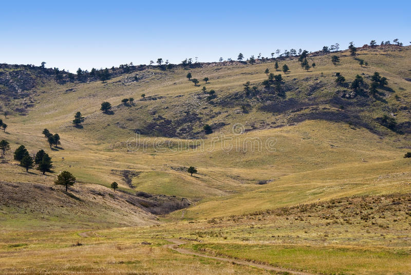 Pleasant Valley in the Rocky Mountain Foothills. Pleasant valley in springtime with gold and green grasses near Boulder, Colorado stock photo