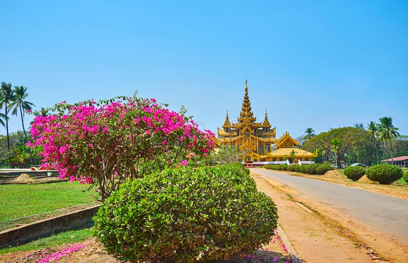 The gardens of Bago, Myanmar. Pleasant walk in scenic Kanbawzathadi garden with a view on blooming bougainvillea bush, trimmed plants, juicy lawn and golden royalty free stock images