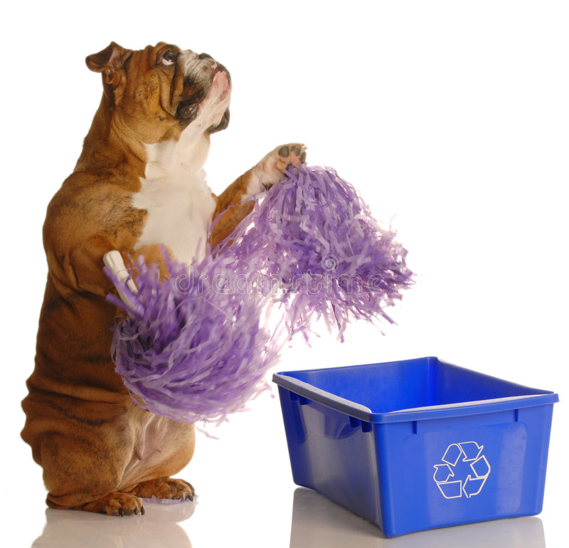 Download Please recycle stock image. Image of expression, bulldog - 6933489