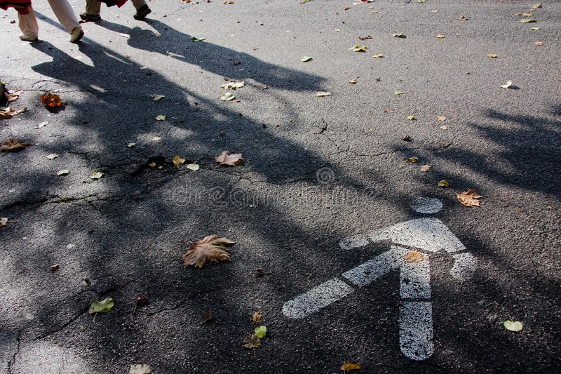 Download Please wait for me! stock photo. Image of leaf, shadow - 22161704