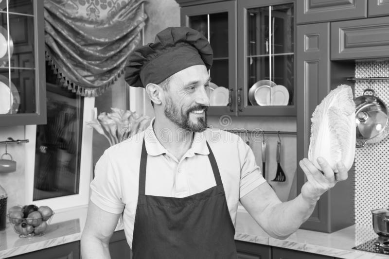 Pleased chef looking at fresh cabbage in his hand royalty free stock image