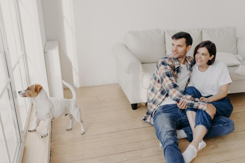 Pleased satisfied romantic couple embrace and looks out of window, pose in empty room near sofa, their dog wants to have outdoor stock images
