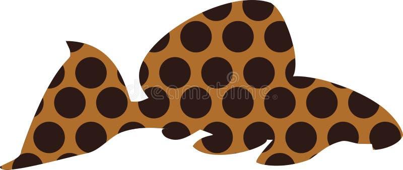 Pleco del leopardo - pesce dell'acquario illustrazione vettoriale