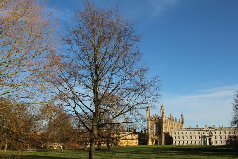 Plecy przy uniwersytet w cambridge Anglia UK zdjęcie stock