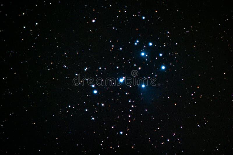 Pleiades royaltyfria bilder
