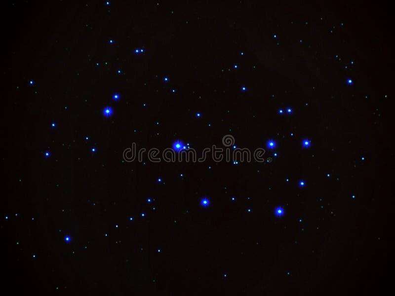 PLeiades (M45) arkivfoton