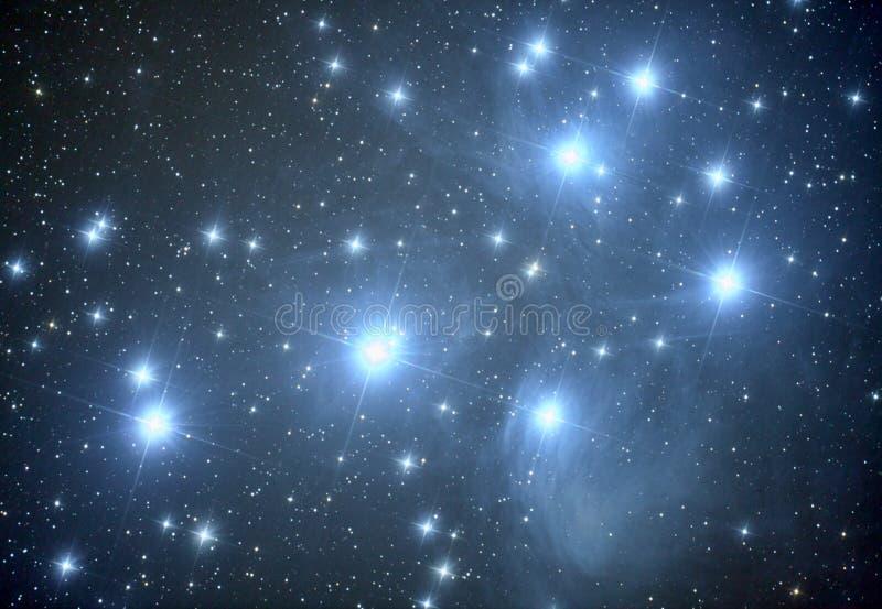 Pleiades M45 nebulosa arkivfoton