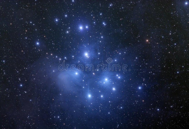 Pleiades Star Cluster royalty free stock photography