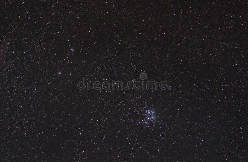 Pleiades w gwiazdozbioru Taurus obrazy royalty free