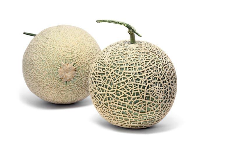 Plein melon de cantaloup sur le fond blanc photographie stock