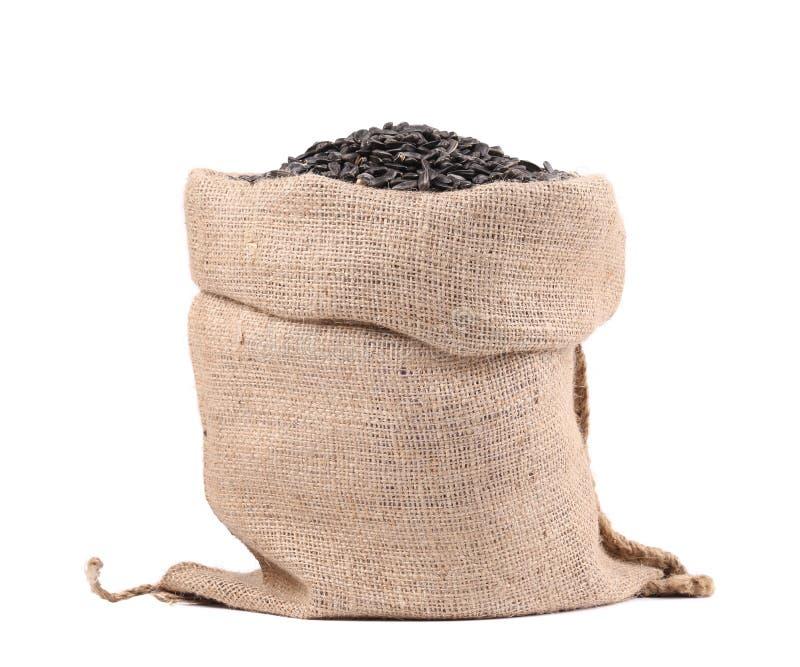 Plein sac avec des graines de tournesol. image libre de droits