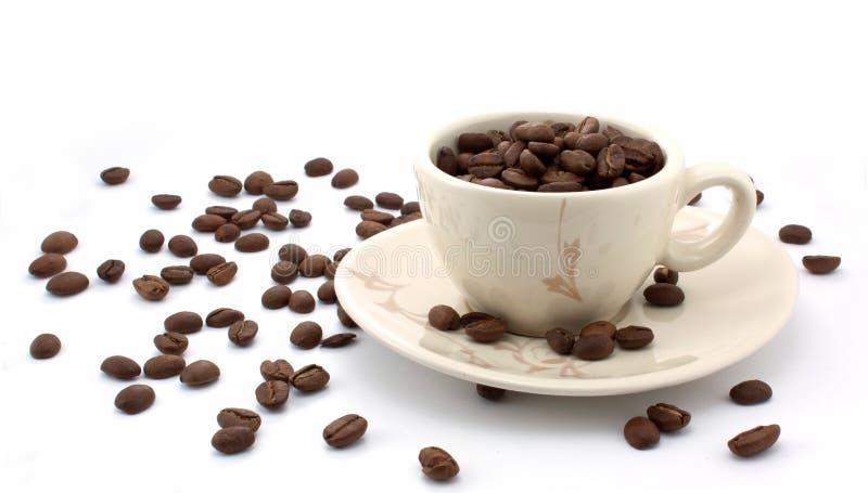 Pleine cuvette de graine de café photos libres de droits