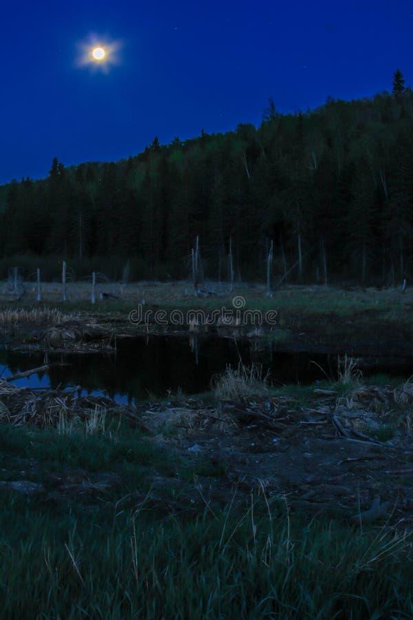 Pleine lune au-dessus de parc national de montagne d'équitation photo libre de droits