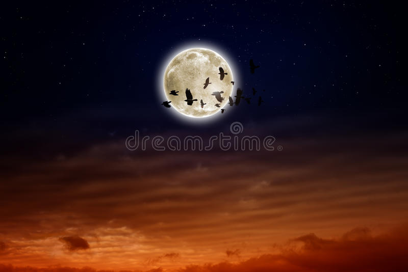 Pleine lune, corbeaux photographie stock