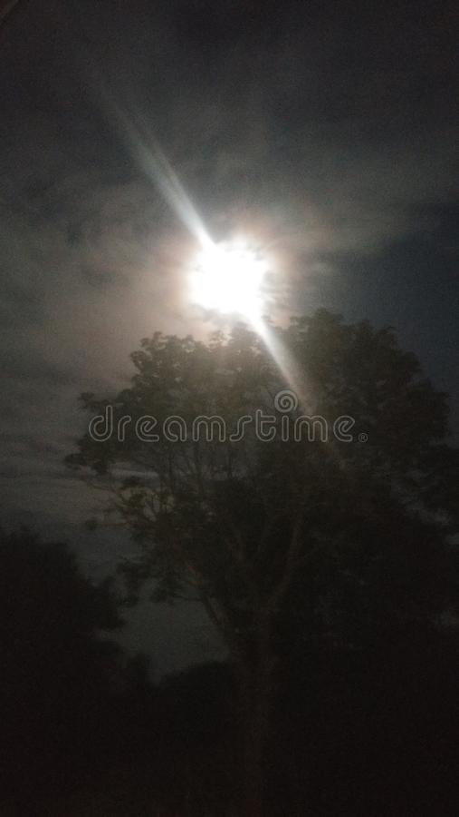 Pleine lune méga lumineuse photo libre de droits