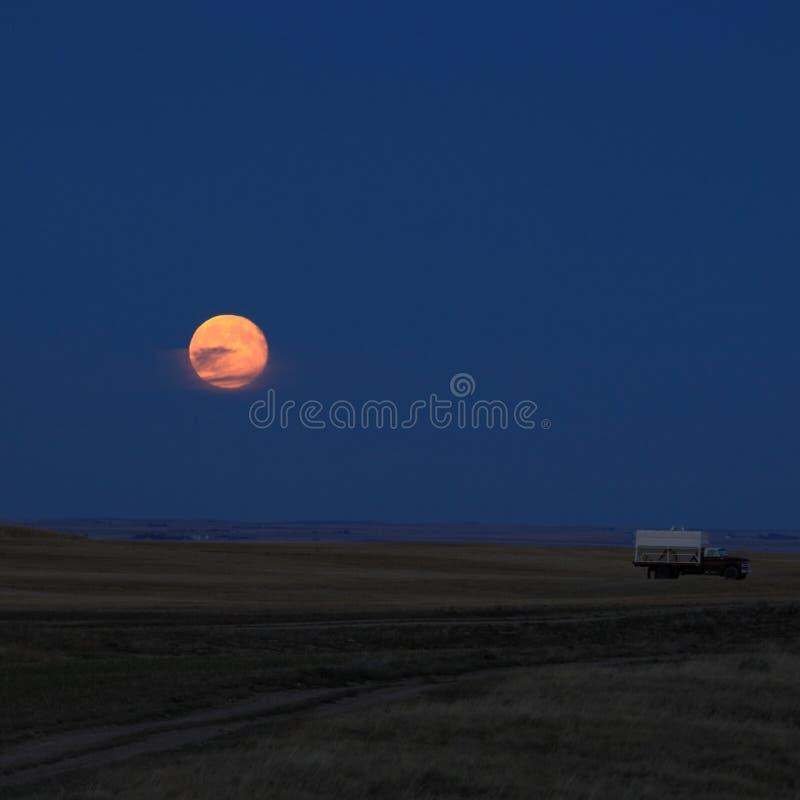 Pleine lune se levant au-dessus de l'automne semant le champ images libres de droits