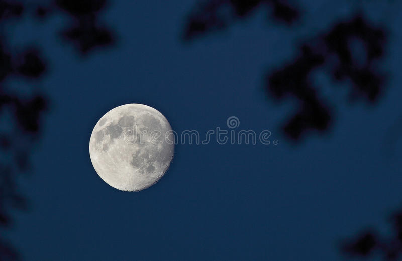 Pleine lune sur le ciel de nuit foncé photos stock