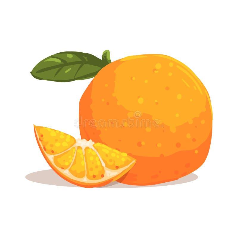 Pleine orange fraîche de jardin avec la feuille et tranche orange à côté de elle illustration lumineuse de style frais illustration de vecteur