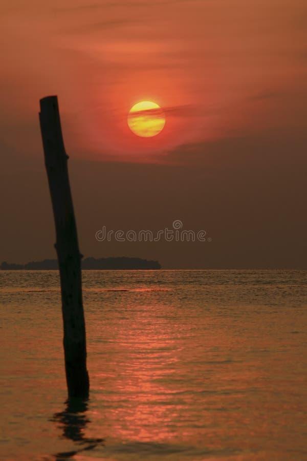 Pleine silhouette de coucher du soleil photo stock