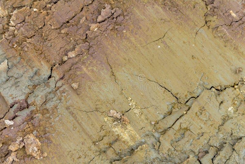 Pleine structure de sol d'abrégé sur cadre photo libre de droits