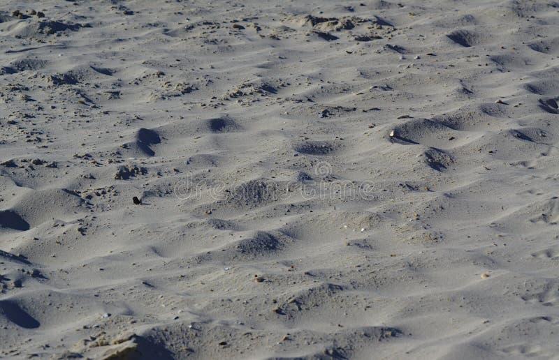 Pleine vue de cadre du sable simple de plage photographie stock libre de droits