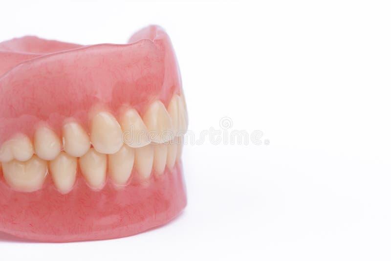 Pleins dentiers de dentier en gros plan sur le fond blanc photos stock