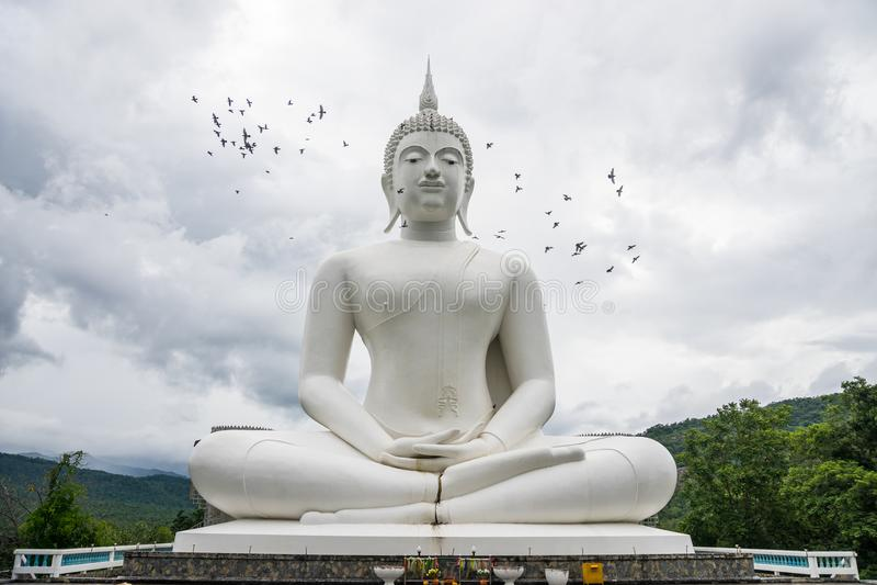 Plenerowego wielkiego białego Buddha wizerunku Buddyjska świątynia fotografia royalty free