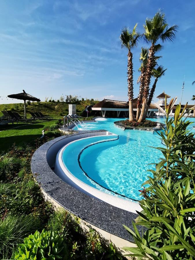 Plenerowy basen z tropikalnymi drzewkami palmowymi zdjęcie stock