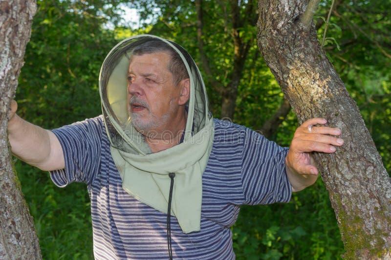 Plenerowy portret starsza pszczelarka w przesłonie zdjęcia royalty free